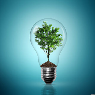sustainable innovation innovation driving sustainability norbert bol